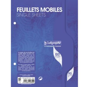 FEUILLES MOBILES 17X22 SEYES